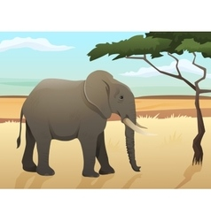 Beautiful wild african animal Big vector image