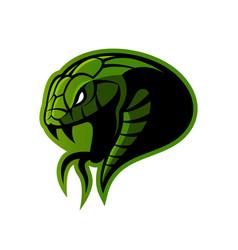 furious green snake sport logo concept vector image
