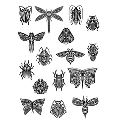 Insect animals tattoos and symbols vector image