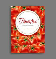 lliustration with realistic tomatoes isolated vector image