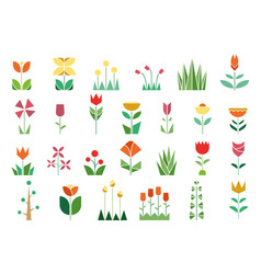 nature flora trees flowers plants set vector image