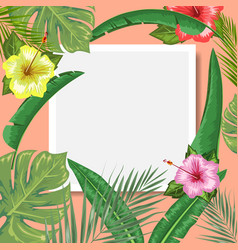 Tropical backdrop with frame or border made of vector