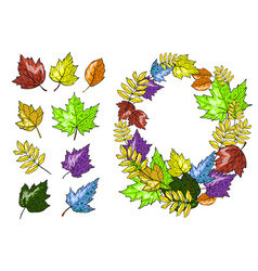 autumn leaves set hand drawn vector image