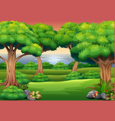 Forest background with the nature scene vector