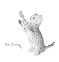 Kitten in black and white graphic style costs on vector