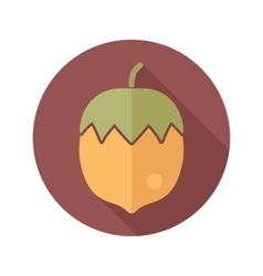 Nut flat icon with long shadow vector image