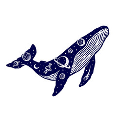 Whale universe vector