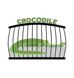 Crocodile in zoo large alligator in cage green vector