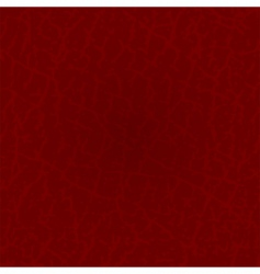seamless leather vector image