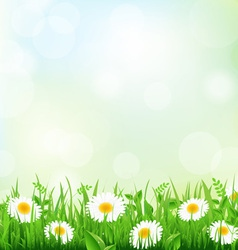 Floral Field vector image vector image