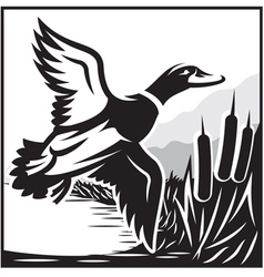 Monochrome with flying wild du vector image vector image