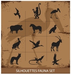 Safari fauna symbols silhouette set collection vector image