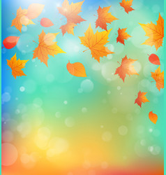 background with falling maple leaves vector image