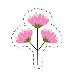 flower spring flourishes delicate cut line vector image
