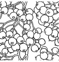rowan berries pattern on white background vector image