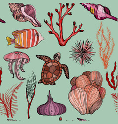 seamless pattern with marine hand drawn corals and vector image