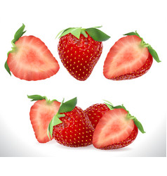 strawberry realistic sweet berry 3d fruit vector image