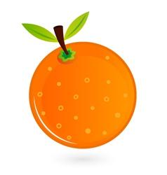 Orange fruit isolated on white vector image vector image