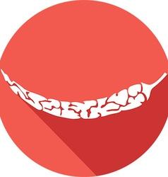 Chili Icon vector image vector image