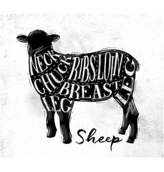 sheep lamb cutting scheme vector image