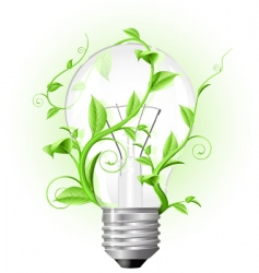 light bulb twisted with plant vector image vector image