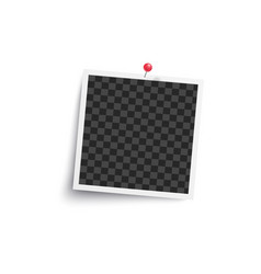 album blank or square empty photo frame pinned to vector image