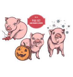 collection of hand drawn colored pigs for vector image