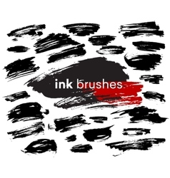Detail ink brush paint stroke vector image