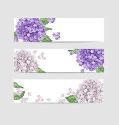 Hydrangea floral banner template in watercolor vector