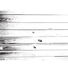 Imag1517 vector
