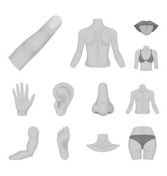 Part of the body limb monochrome icons in set vector