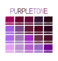 Purpletone Color Tone vector