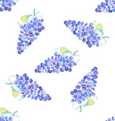 Watercolor grape with leaves in vintage style vector image