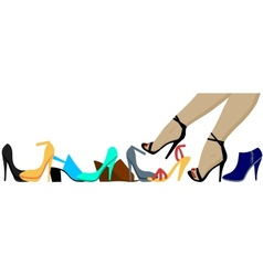 Legs and shoes vector image