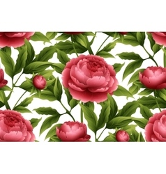 Seamless pattern with peony flowers vector image