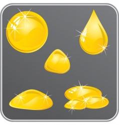 oil or honey drops set vector image vector image