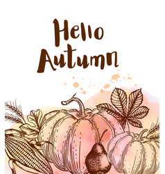 Autumn background with ripe pumpkins vector