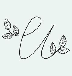 handwritten letter u monogram or logo brand vector image