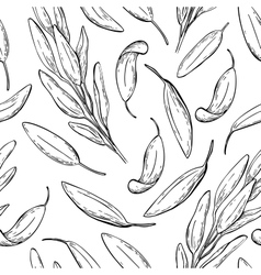 Sage drawing seamless pattern Isolated vector