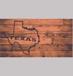 texas map brand vector image