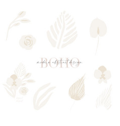 Trendy abstract boho florals dried palm leaves vector