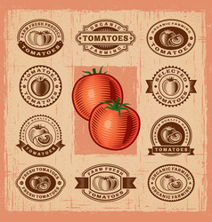 Vintage tomato stamps set vector image
