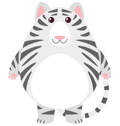 white tiger with round body vector image