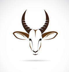 image of an deer head impala vector image