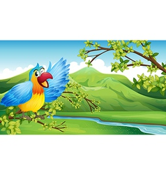 A big and colorful parrot near the river vector image