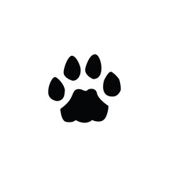 cat footprint vector image