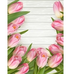 Pink tulips on white wooden background eps 10 vector