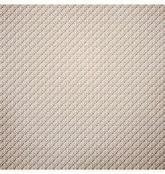 Seamless fabric pattern vector image