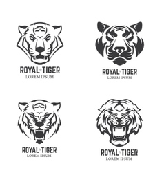 Set of the tiger heads Sport team mascot Design vector image