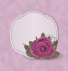 Vintage card with pink roses vector image vector image